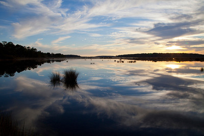 Bear Island WMA Sunset IMG_1321