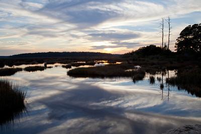 Bear Island WMA Sunset IMG_1324