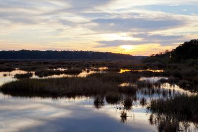 Bear Island WMA Sunset IMG_1325