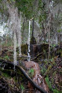 Artesian Well IMG_1264
