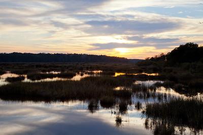 Bear Island WMA Sunset IMG_1326