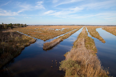 Canals at Nemours Plantation IMG_1303