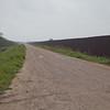 Border Fence near Sabal Palm IMG_6120
