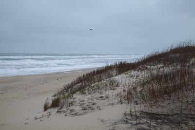 Beach near Pea Island NWR IMG_0721