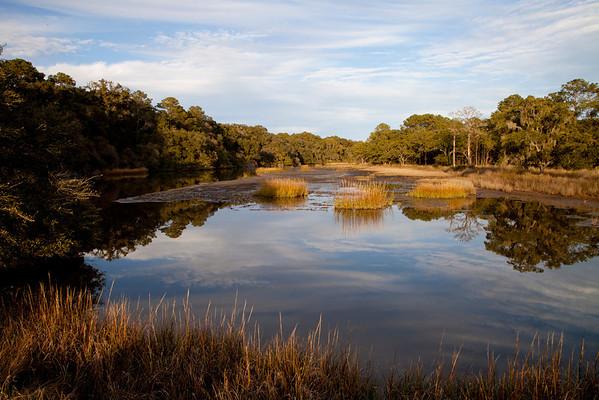 Botany Bay WMA IMG_1334