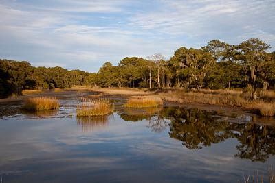 Botany Bay WMA IMG_1333