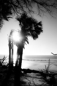 Sunrise Peeking Through_IMG_1194 rev 2_BW