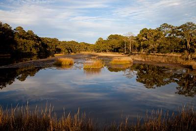 Botany Bay WMA IMG_1332