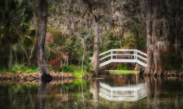 Magnolia Bridge