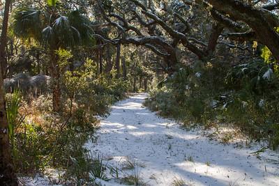 Botany Bay IMG_8931