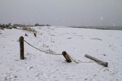 Edisto Beach Snow IMG_8784