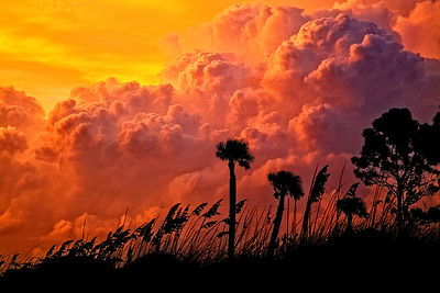202_Edisto Sunset IMG_8786 rev 1