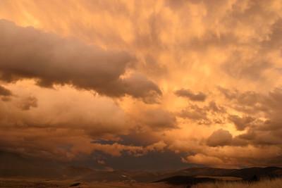 Natl Bison Range, MT