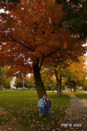 Under the Rainbow Trees (Chambly, Canada)
