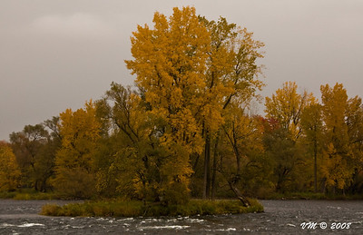 Autumn trees along the Richelieu River (Chambly, Canada)