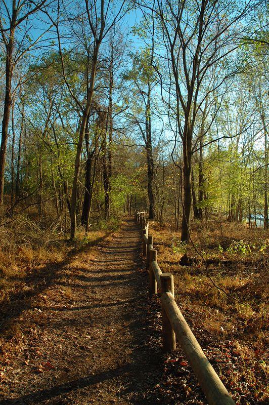 Lake Trail - Radnor Lake, Tennessee State Park