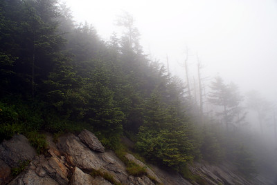 Clingman's Dome | Great Smoky Mountains, Tennessee | US - 0026