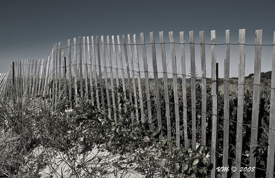 What's beyond the fence? (Brewster, Cape Cod)