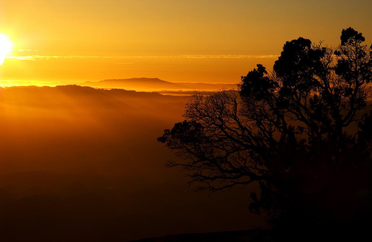 Mt Tamalpais in Golden Light