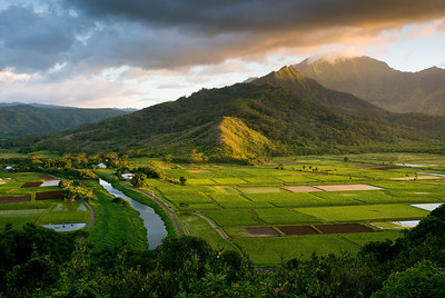 Hanalei Valley Overlook