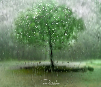 Looking thru' a car windscreen during a heavy rain.