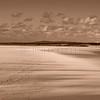 Baie de Canche © 2016 Olivier Caenen, tous droits reserves