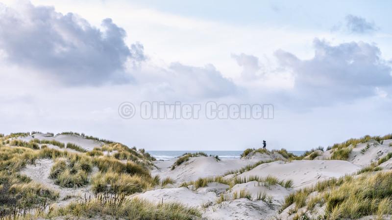 © 2019 Olivier Caenen, tous droits reserves