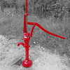 Red Water Pump,  Lake Renwick Preserve, Plainfield, Illinois