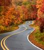 Curvy mountain road in autumn