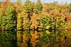 Fall Lake Reflections