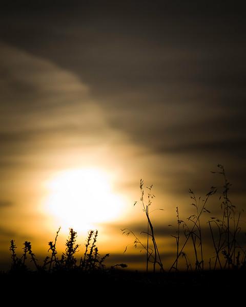 March 2nd, 2013 - Shrouded Sunrise