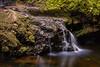 Lower Onomea Falls