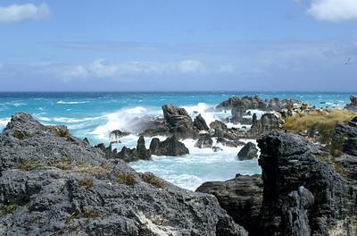 Tobacco Bay | Bermuda - 0037