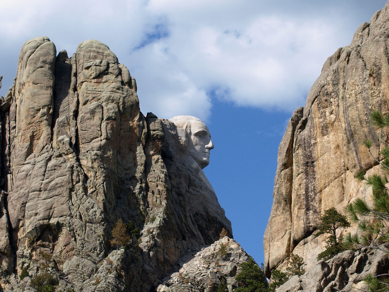 I call this photo George. I was on a  road trip to Mount Rushmore but we left the park by the rear and coming around a corner we saw George.