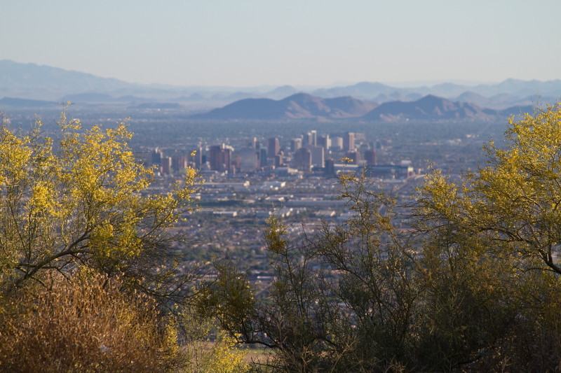 Photo of Phoenix from the top of South Mountain Park.