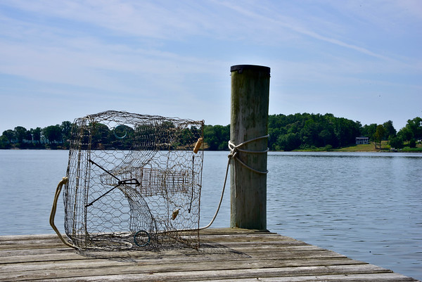 Crab Pot On Pier