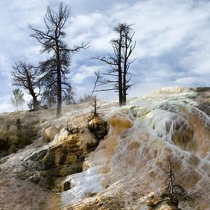 Morning at Palette Spring at Mammoth Hot Springs