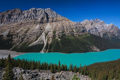 Peyto Peak and Peyto Lake in Banff National Park