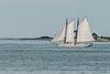 Delaware Bay Oyster Schooner
