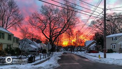 dog walk sunrise-43-2