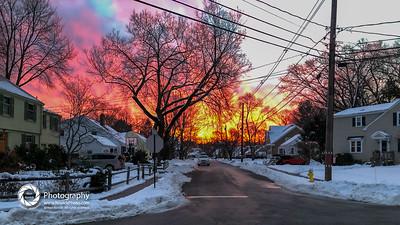 dog walk sunrise-44-3