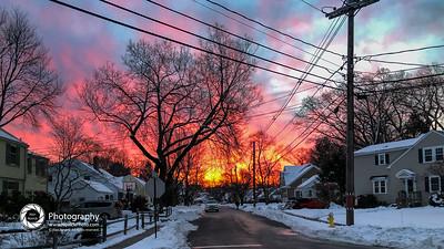 dog walk sunrise-43-3