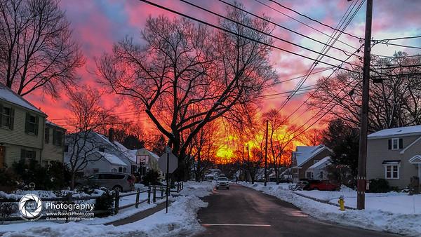 dog walk sunrise-44-2