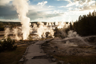 Scenic-early-morning-path-to-geysers-Norris-Geyser-and-Porcelain-Basins-Yellowstone-National-Park-Wyoming-(c)-Bolio-Photography
