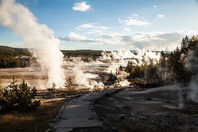Landscape-smoking-geyser-field-Norris-Geyser-Basin-Yellowstone-National-Park-Wyoming-(c)-Bolio-Photography