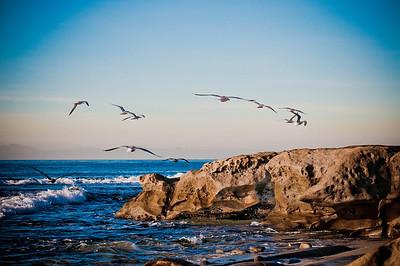 ©JLCramerPhotography 2011