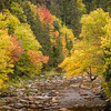 Ammonoosuc River New Hampshire in Fall Foliage