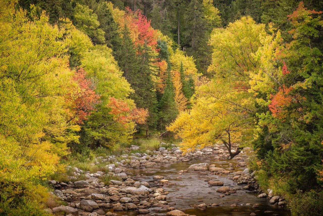 Ammonoosuc River New Hampshire in Fall Foliage