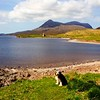 Buddy with the ruin Castle Ardvreck behind. Sutherland. Scotland.