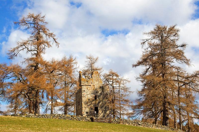 Knockan Castle near Ballater. Scotland.
